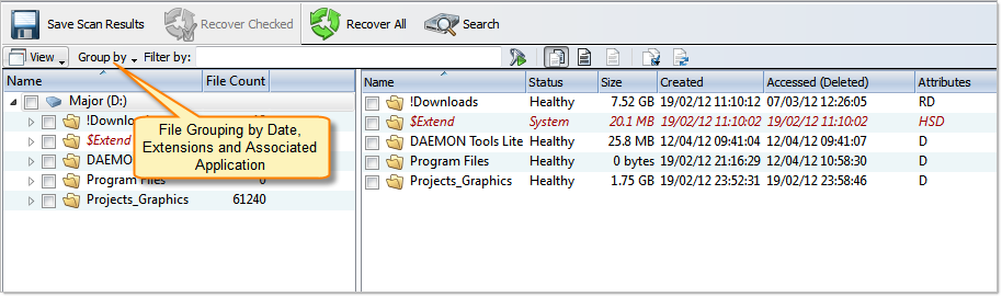 File grouping in Volume Scan Result